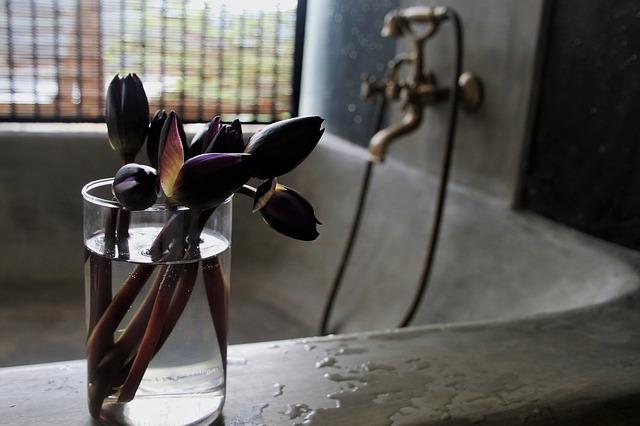 květiny na vaně