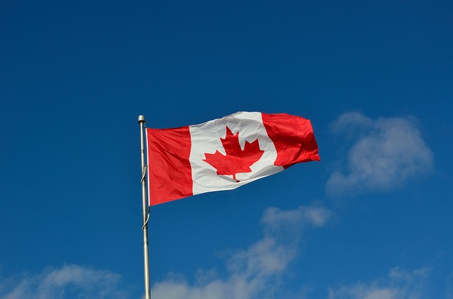 Kanadská vlajka.jpg